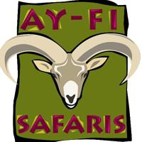 Ayfisafaris